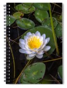 Mudd Pond Water Lily Spiral Notebook
