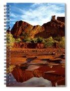 Muddy Reflection Spiral Notebook