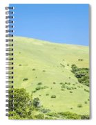 Muir Woods Forest Drive By Nature Near San Francisco Spiral Notebook