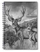 Mule Deer Heaven Spiral Notebook