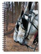 Mules At Sugar Camp Spiral Notebook