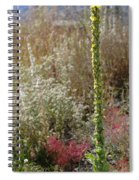 Mullin And Other Springtime Wildflowers Spiral Notebook