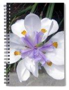 Multi-petal White Iris Flower. Very Unusual, Rare Form Spiral Notebook
