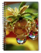 Multicolored Drops Spiral Notebook