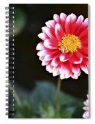 Mums Spiral Notebook