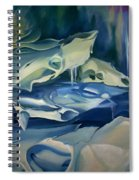 Mural Skulls Of Lifes Past Spiral Notebook