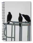 Murder In Des Plaines Spiral Notebook