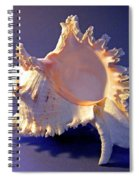 Murex Ramosus Seashell Spiral Notebook