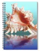 Murex Seashell Reflection Spiral Notebook
