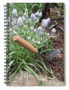 Muscari Blend Blue And White Spiral Notebook