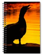 Muscovy Sunset Spiral Notebook