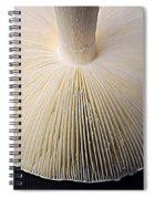 Mushroom Macro Expressionistic Effect Spiral Notebook