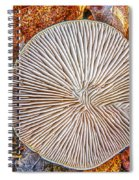 Mushroom On Fall Floor Spiral Notebook
