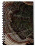 Mushroom Shells Spiral Notebook