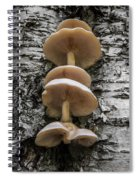 Mushroom Treehouse Spiral Notebook