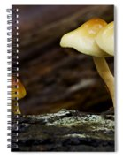 Mushroom Trio Spiral Notebook