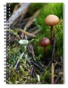 Mushroom Tundra Spiral Notebook