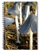 Mushrooms After A June Rain Spiral Notebook
