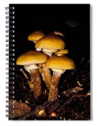 Mushrooms By Night Spiral Notebook