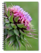Musk Thistle In Bloom Spiral Notebook