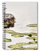 Muskrat Love Spiral Notebook