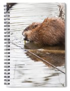 Muskrat Spring Meal Spiral Notebook