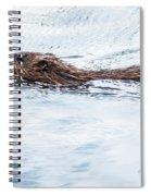 Muskrat Spring Swim Spiral Notebook