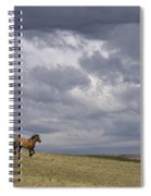 Mustang And Stormy Sky Spiral Notebook