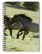 Mustang Mares Spiral Notebook