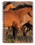 Mustang Run Spiral Notebook