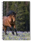 Mustang Stallion And Lupines Spiral Notebook