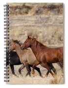 Mustang Trio Spiral Notebook