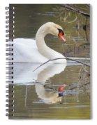 Mute Swan Glide II Spiral Notebook