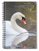 Mute Swan I Spiral Notebook