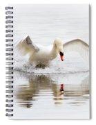 Mute Swan Landing II Spiral Notebook