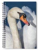 Mute Swan Portrait Spiral Notebook