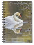 Mute Swan Reflection I Spiral Notebook