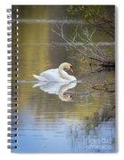 Mute Swan Reflection Spiral Notebook