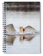 Mute Swan Swim Spiral Notebook