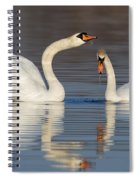 Mute Swans Drinking Spiral Notebook
