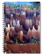 Muted Bryce Spiral Notebook