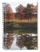 Muted Fall Spiral Notebook