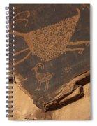 Mv Petroglyph 7364 Spiral Notebook