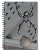My Babies Spiral Notebook