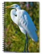 My Better Side Spiral Notebook