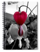 My Bleeding Heart Spiral Notebook