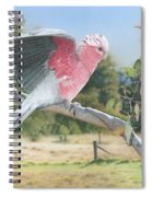 My Country - Galah Spiral Notebook