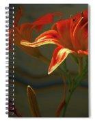 My Daylilies 2 Spiral Notebook