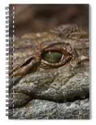 My Eye Is On You Spiral Notebook