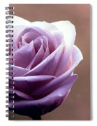 My Favorite Rose Spiral Notebook